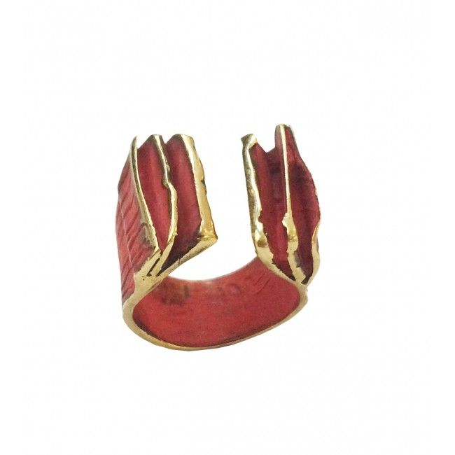 Bronze ring in red from...